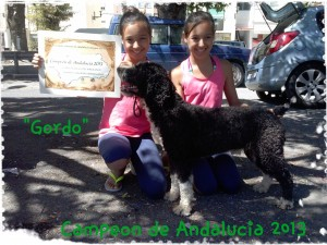 ch andalucia