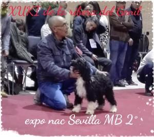 16-03-05-15-47-05-006_deco